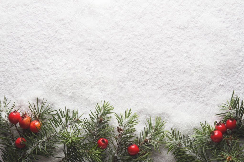 Christmas fir tree on snow background