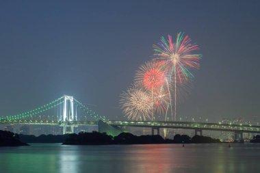 bridge with beautiful firework