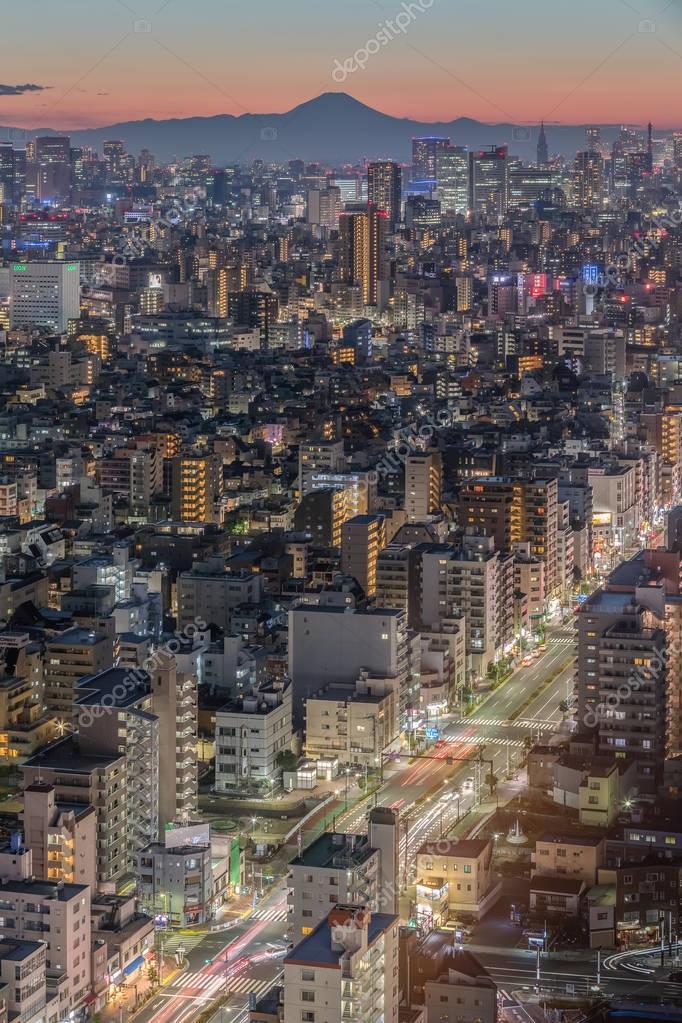 Tokyo city view and Mountain Fuji