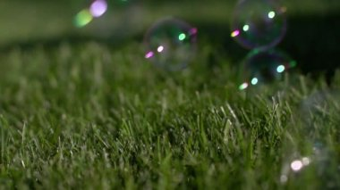 Beautiful sunny soap bubbles fly around the lawn