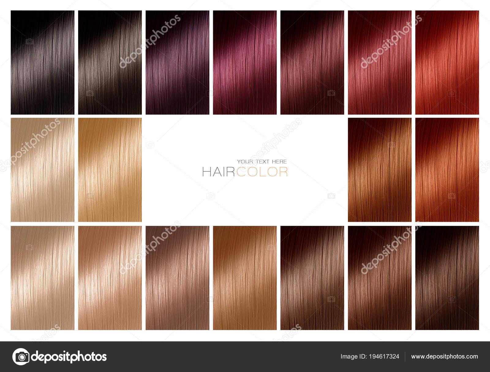 Carta de color para tintes de cabello. Paleta de colores de cabello con una  amplia gama de muestras mostrando pelo teñido de diferentes muestras de  colores ... 862c1c242c84