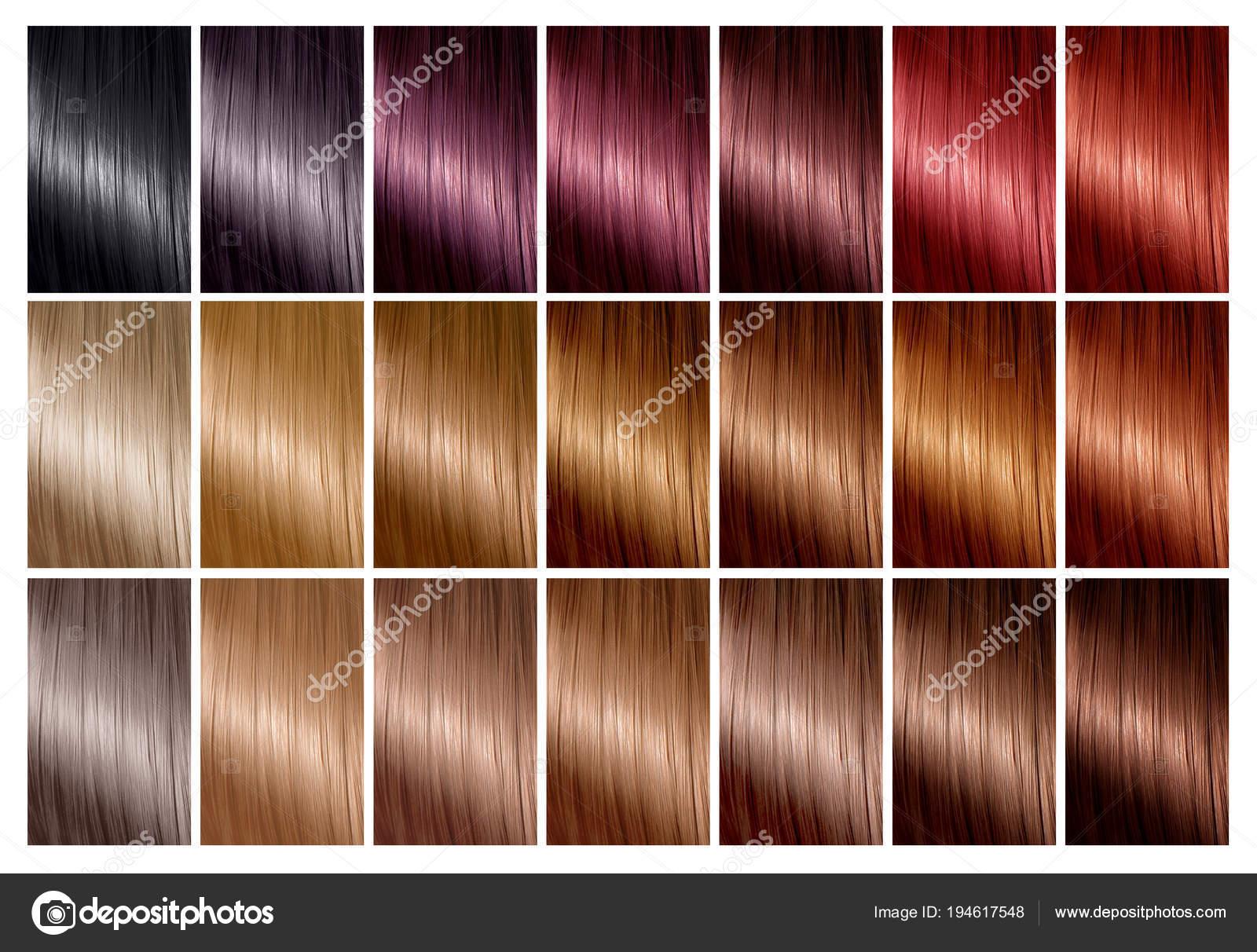 Haar Farbpalette Mit Einer Reihe Von Farbfeldern Tönungen