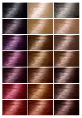 Color chart for hair dye. Tints. Hair color palette with a range