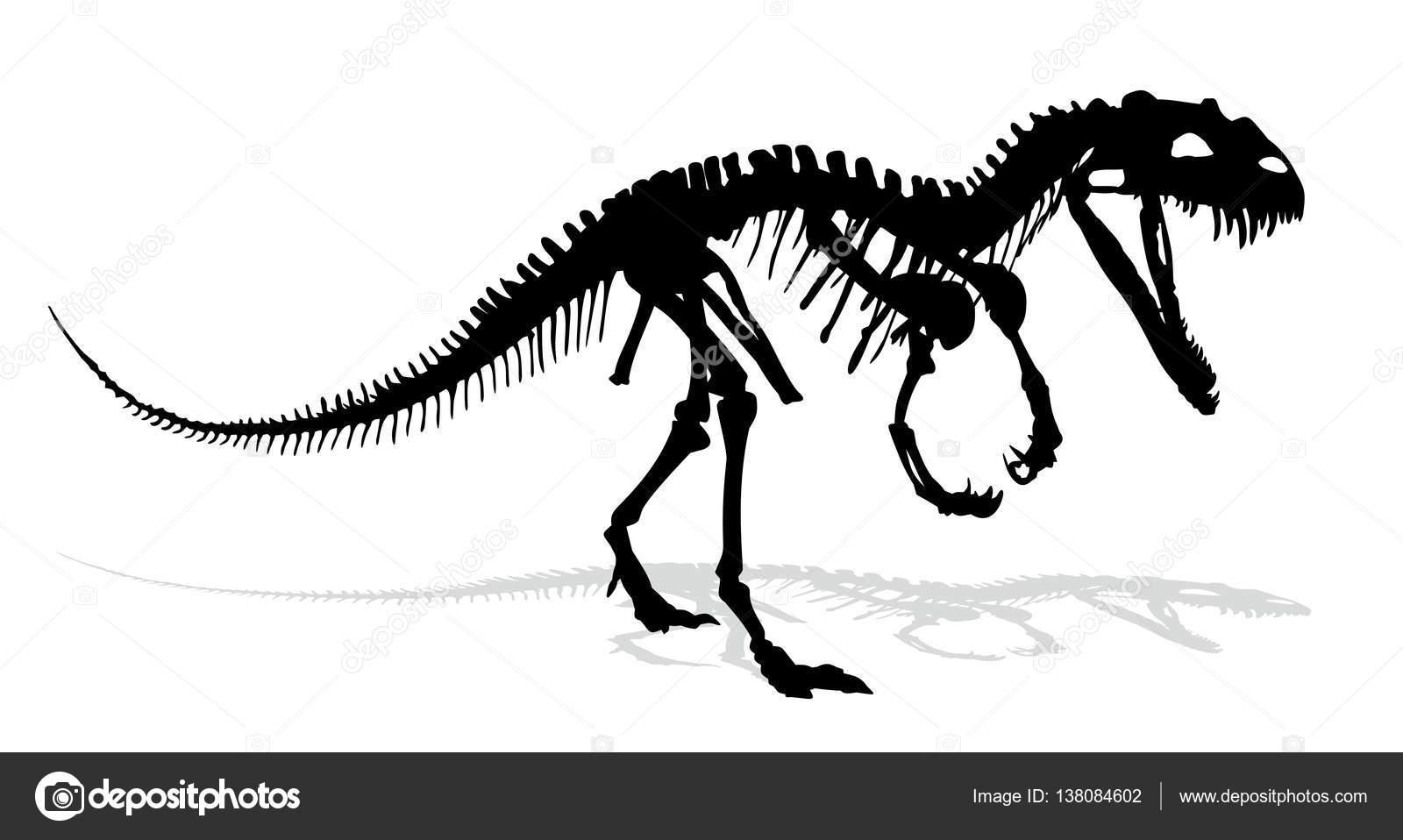 El esqueleto de dinosaurio — Vector de stock © Designer_an #138084602