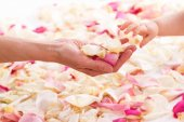Photo Female and baby hands with rose petals