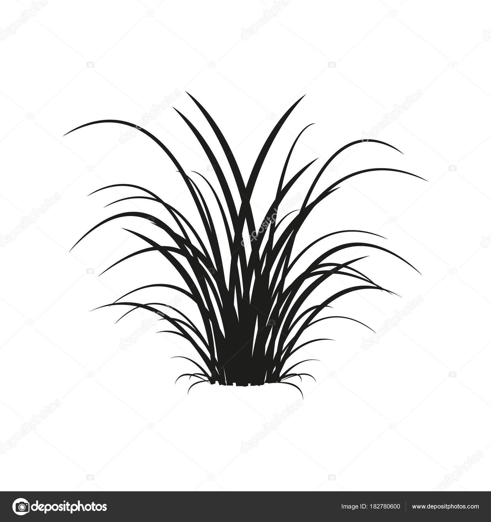 icon grass vector illustration stock vector c schaste 182780600 https depositphotos com 182780600 stock illustration icon grass vector illustration html