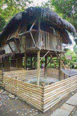Replica of a jungle hut