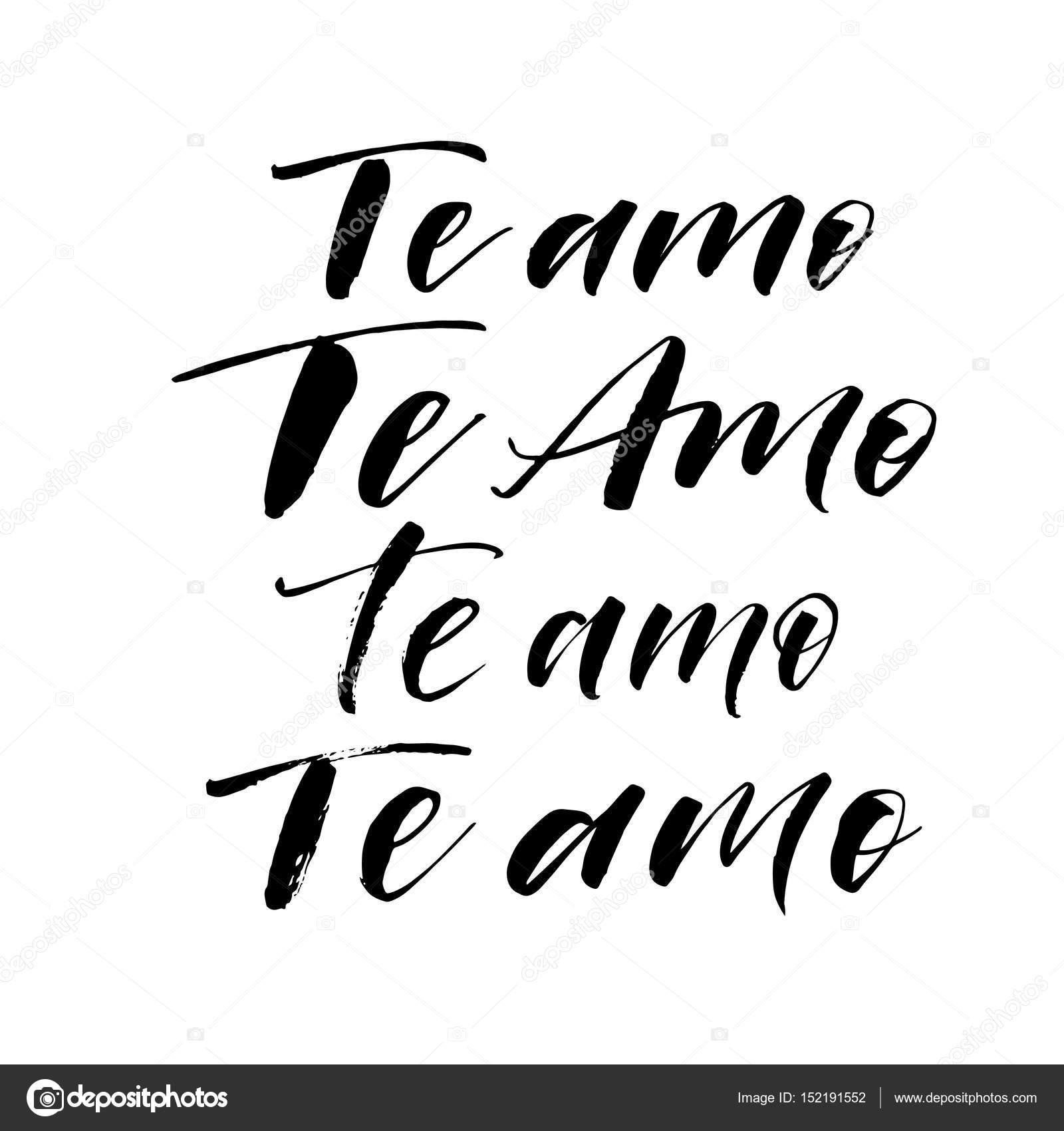 Coleção De Eu Te Amo Frases Em Espanhol Vetores De Stock Gevko93