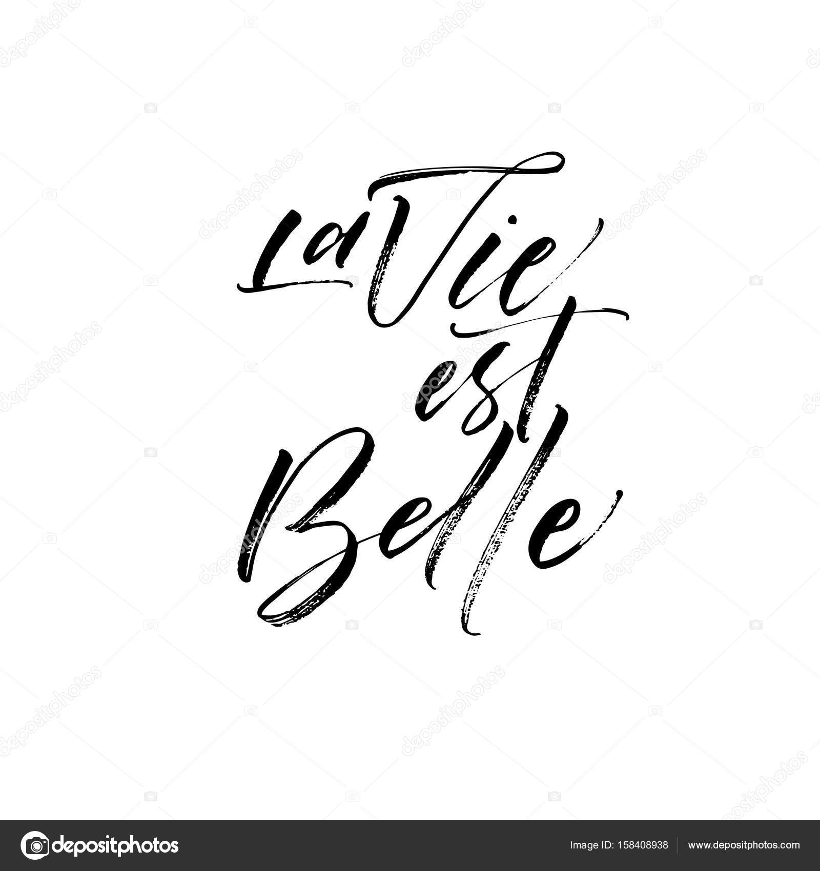 La Vie Est Bell Phrase векторное изображение Gevko93