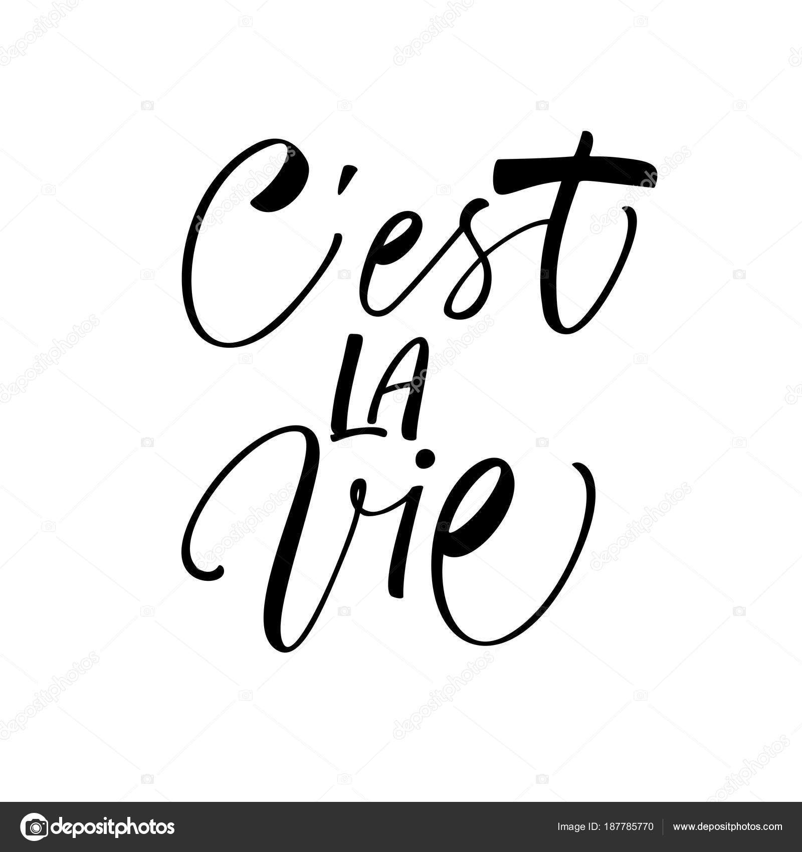 Est Vie Frase Vida Frase Francés Tinta Ilustración