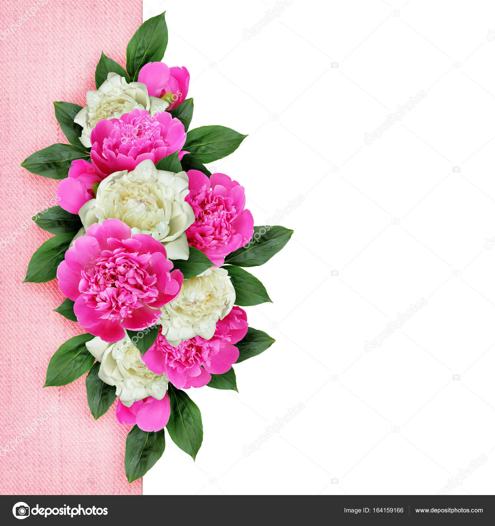 Background With Ink And White Peonies Flowers Stock Photo