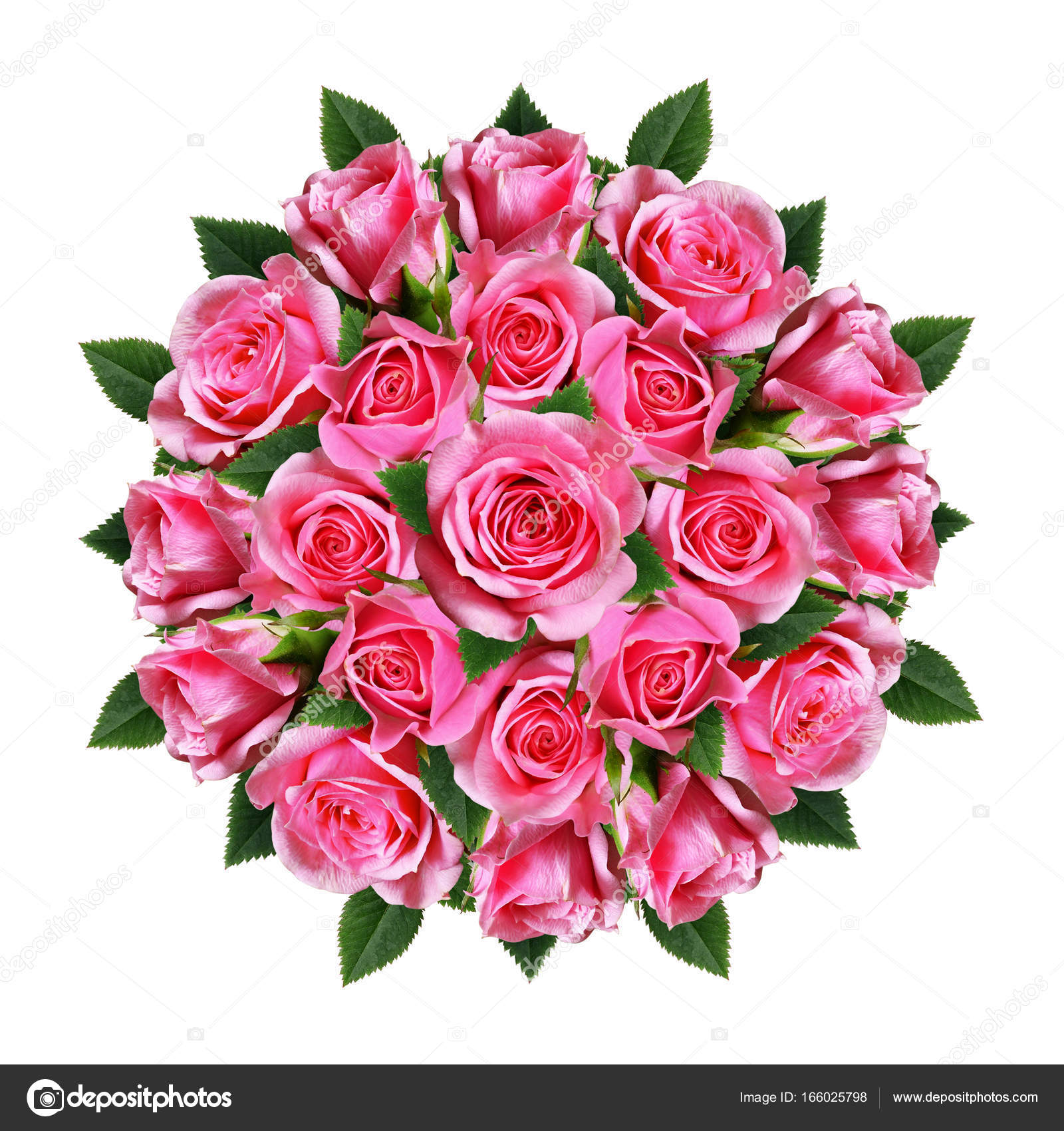Ordered round bouquet of pink rose flowers and buds stock photo ordered round bouquet of pink rose flowers and buds stock photo izmirmasajfo