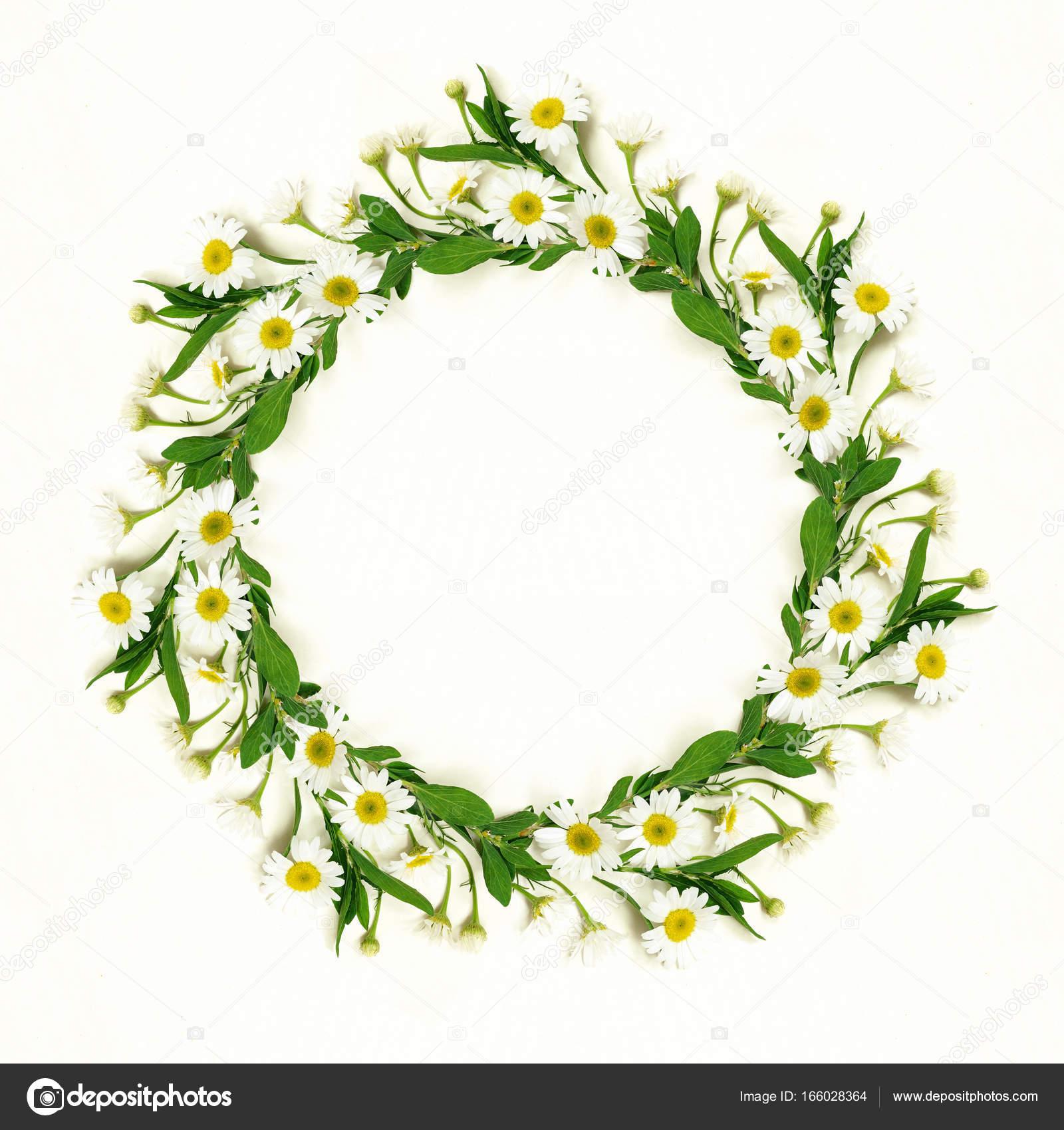 Flores de Margarita redondo marco — Foto de stock © ksushsh #166028364
