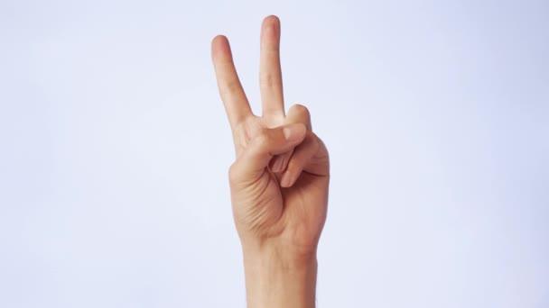 Zwei Finger auf einer erhobenen Hand als Symbol des Sieges. Beliebte und berühmte Handbewegung auf weißem, isoliertem Hintergrund. Nahaufnahme Geste zwei Finger im Abzeichen der Welt