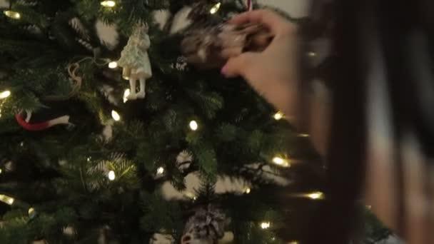 Vánoční nálada. dary pod stromem