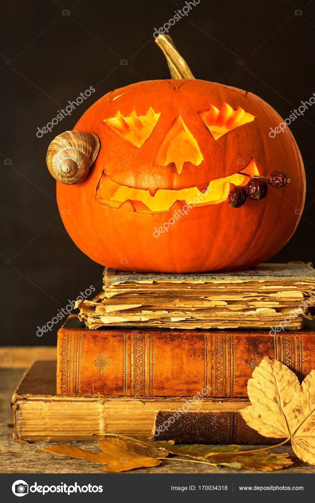 Citrouille D Halloween Et Un Livre De Sorts Citrouille