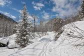 Primavera in montagna di Khamar-Daban