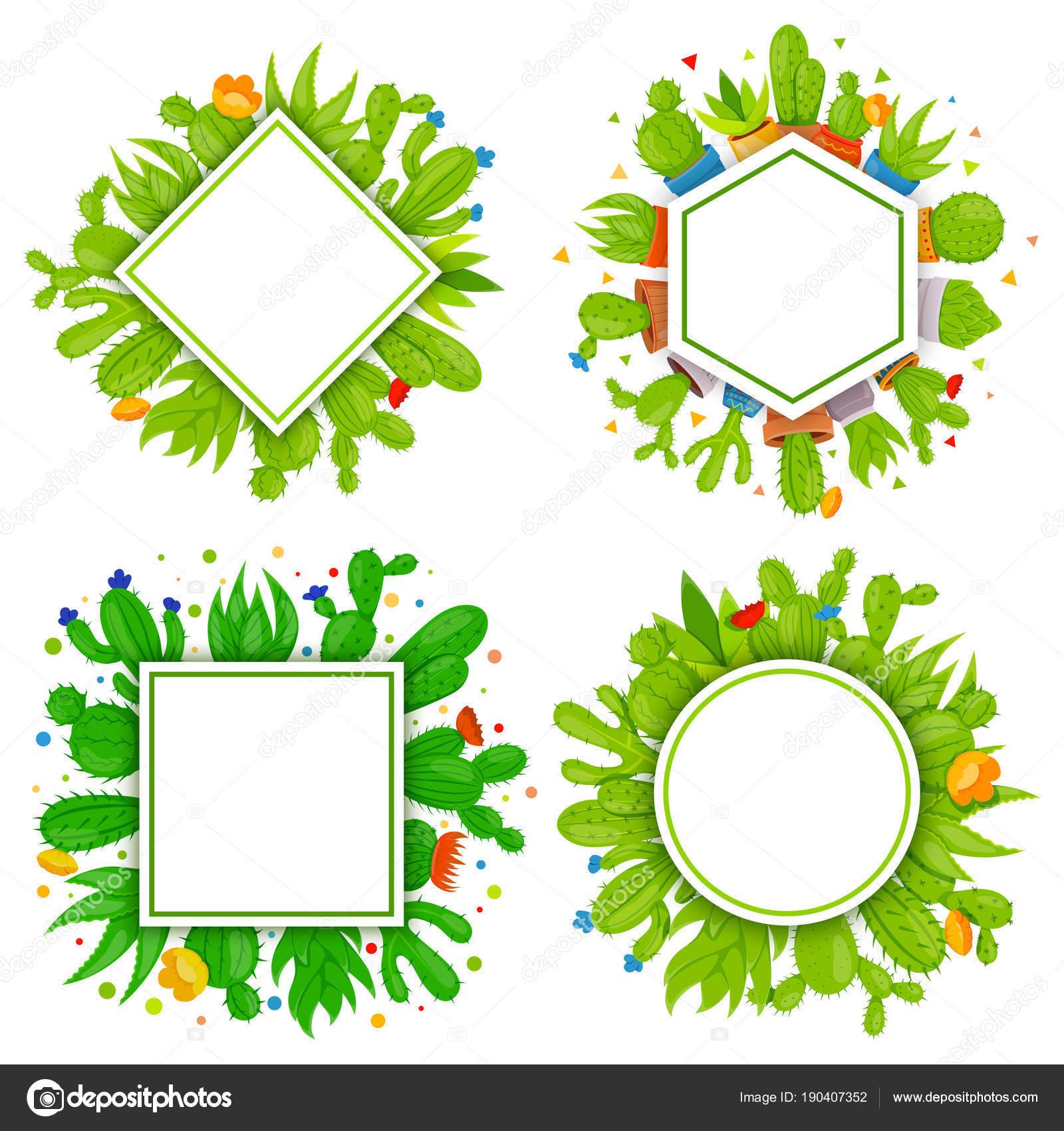 Conjunto de 4 marcos geométricos vacíos con cactus y suculentas ...