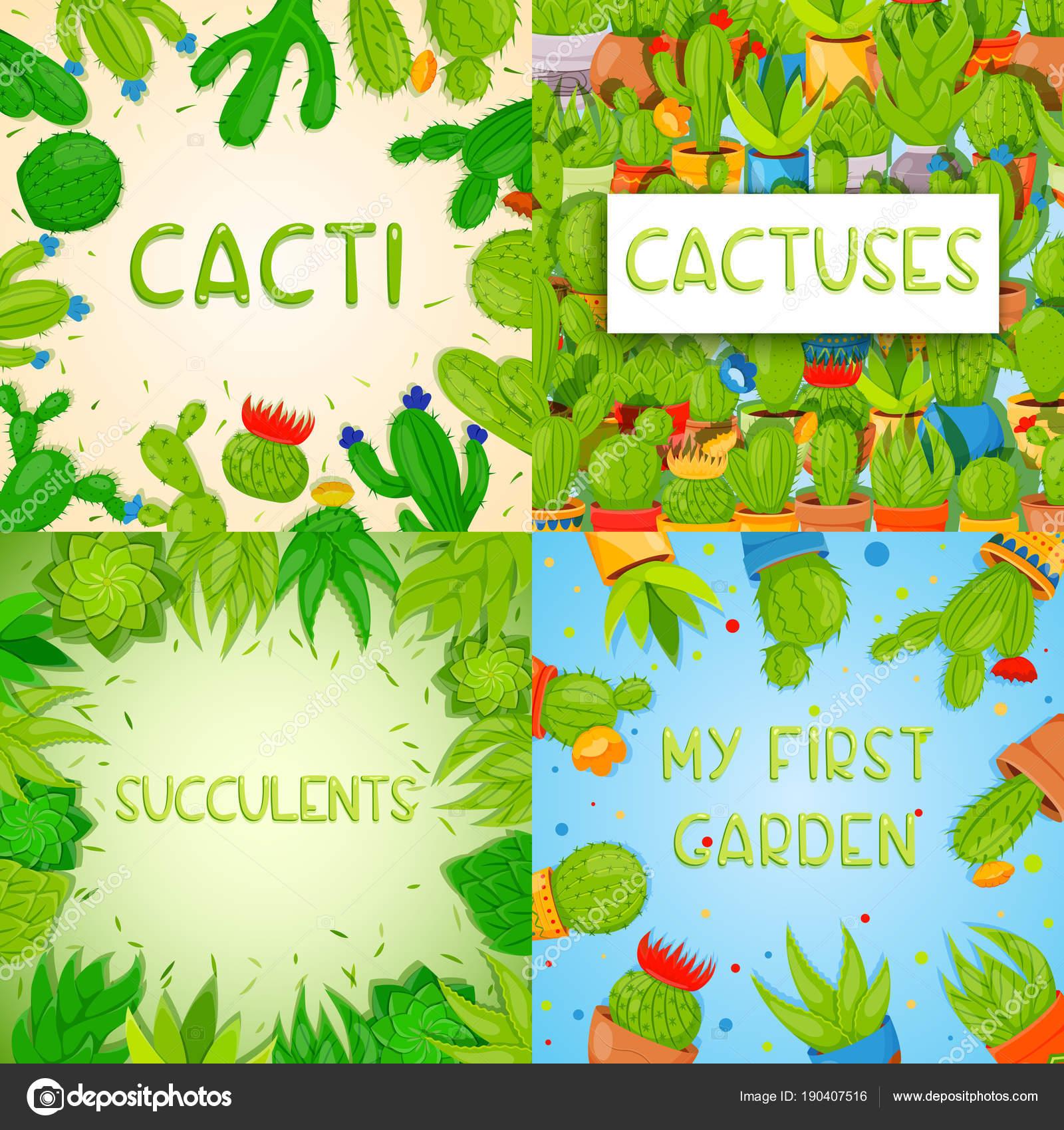 Conjunto de 4 plantillas banner cuadrado con cactus y suculentas ...