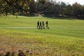 Greenwich Park na podzim