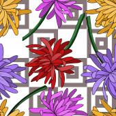 Fényképek Vektor krizantém virágos botanikai virág. Fekete-fehér vésett tinta művészet. Zökkenőmentes háttér minta.