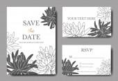 Vector Chrysanthemum floral botanical flower. Black and white engraved ink art. Wedding background card.