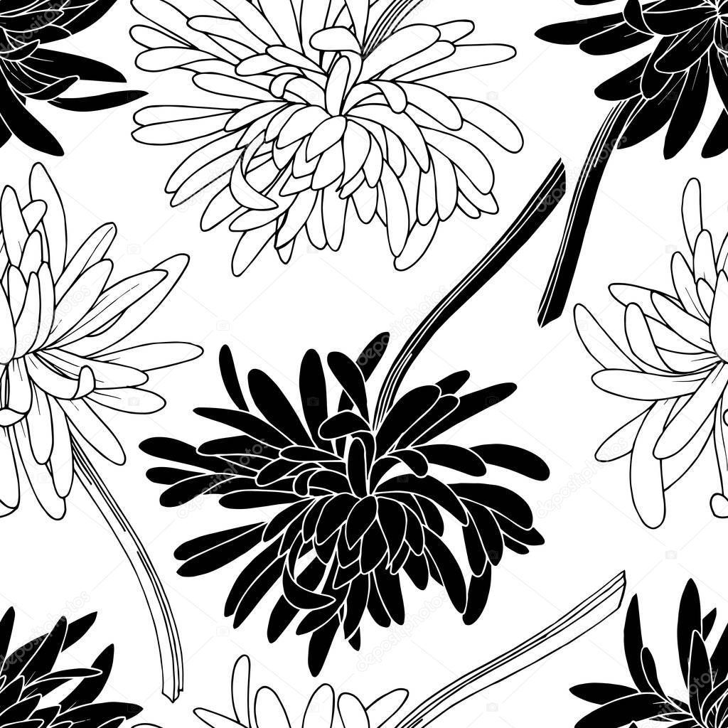Vector Chrysanthemum floral botanical flower. Wild spring leaf wildflower isolated. Black and white engraved ink art. Seamless background pattern. Fabric wallpaper print texture. clipart vector