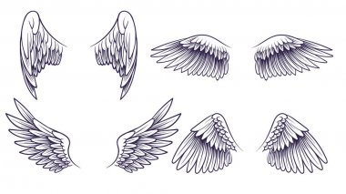 Sketch angel wings. Hand drawn different wings with feathers. Black bird wing silhouette for logo, tattoo or brand, isolated vintage vector set icon