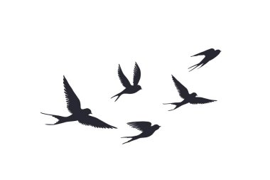 Flying birds silhouette on white background. Vector set of flock of swallows sign. Tattoo spring bird or swift birds