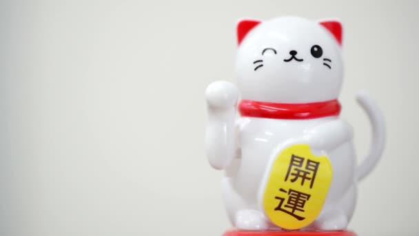Asijské hodně štěstí kočka na bílém pozadí