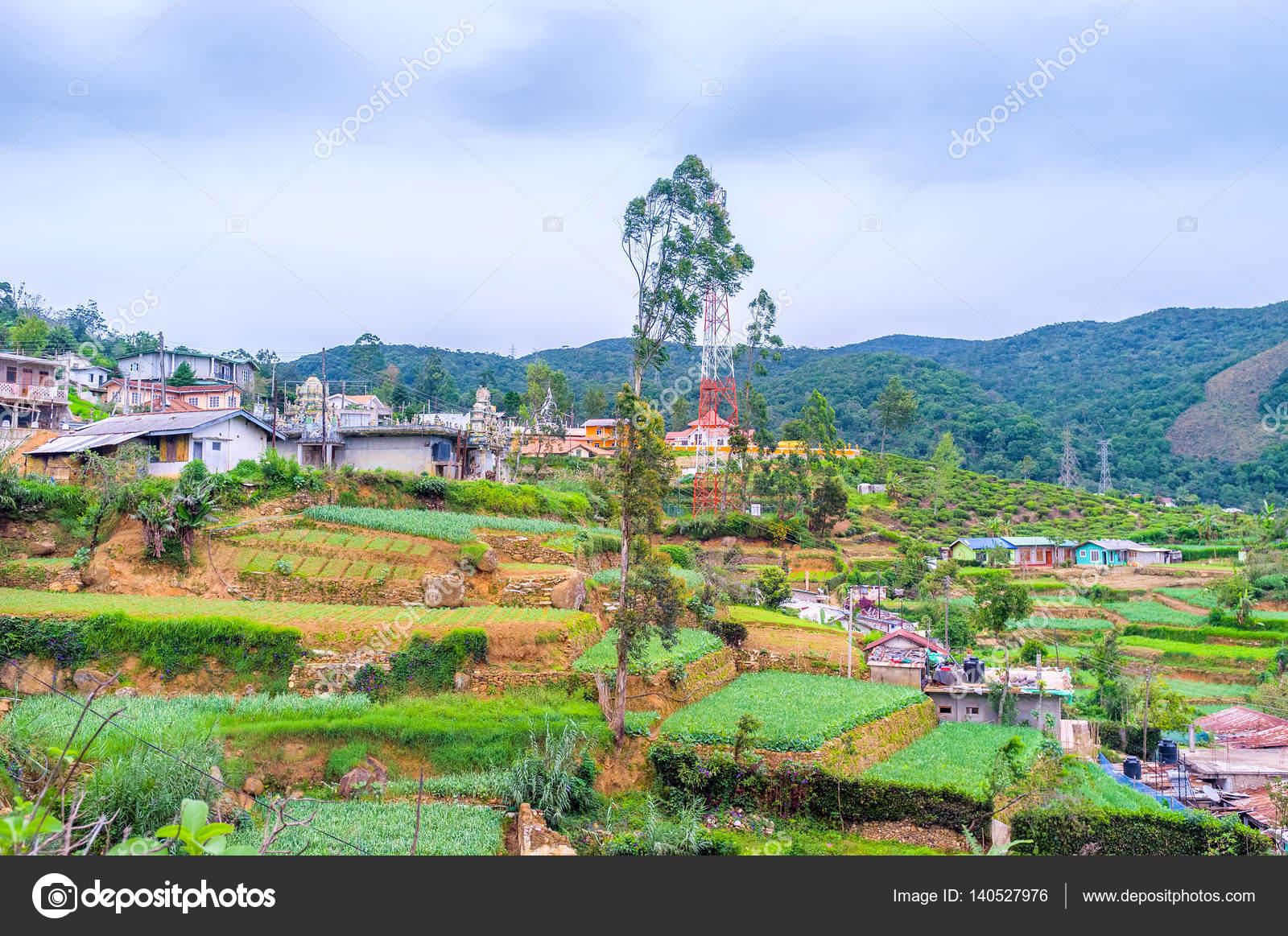 Giardini terrazzati in montagne — Foto Stock © efesenko #140527976
