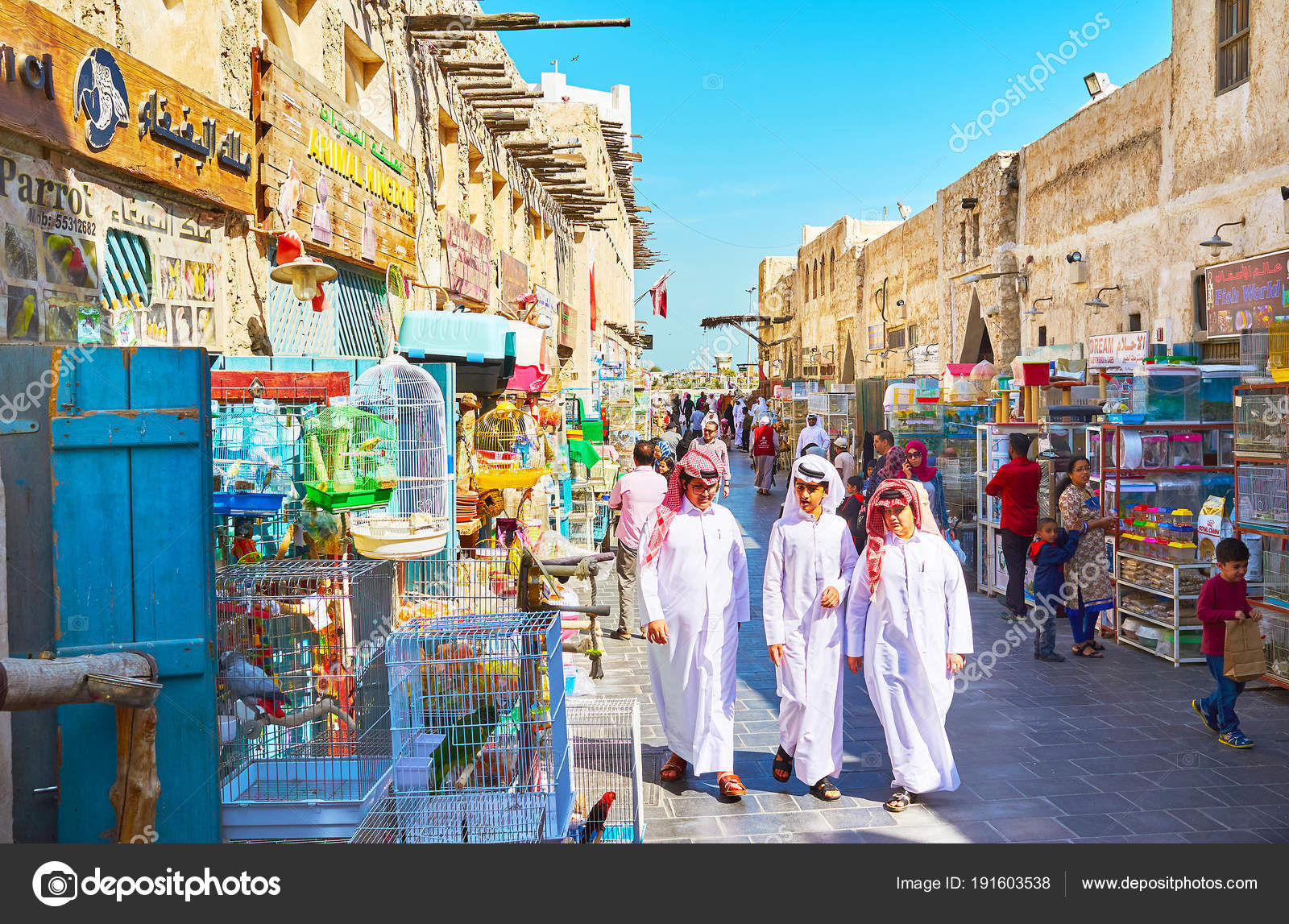 To buy pets and birds in Souq Waqif, Doha, Qatar – Stock Editorial