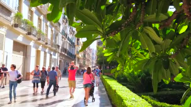 MALAGA, SPAIN - SEPTEMBER 26, 2019: The view on crowded Cister street through the greenery of Cathedral garden, on September 26 in Malaga