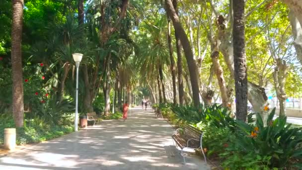 MALAGA, SPAIN - SEPTEMBER 28, 2019: Walk the shady alley of Malaga Park, lined with flower beds, lush trees, tall palms and bushes, on September 28 in Malaga