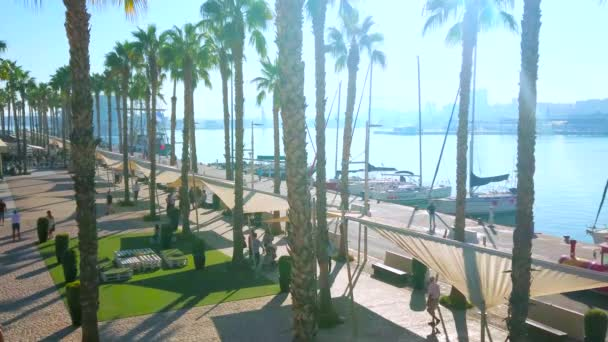 MALAGA, SPAIN - SEPTEMBER 28, 2019: People walk along the shady palm alley of Muelle Uno pier, facing the port with yachts and boats, on September 28 in Malaga