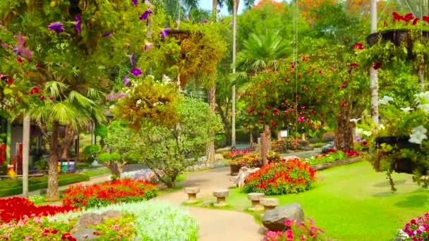 Im Mae Fah Luang Garten sind üppige Blumen weit verbreitet, lokale Gärtner bauen Petunien, Gamben, Begonien, Lobelien, Fuchsien und andere an, Doi Tung, Thailand