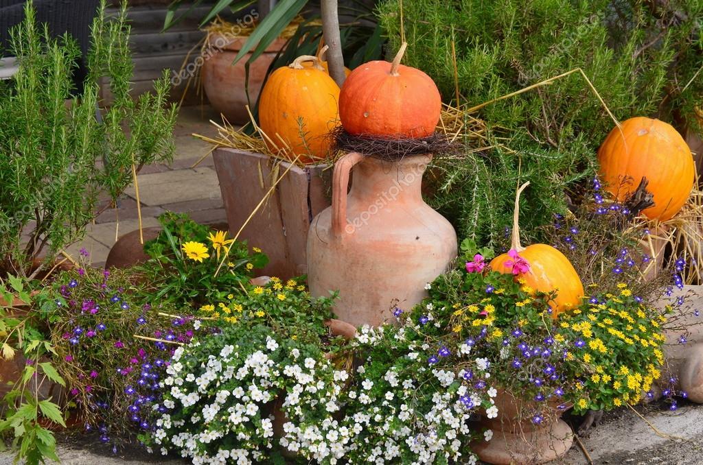 Décoration de jardin de fleurs automne, Basse-Autriche ...