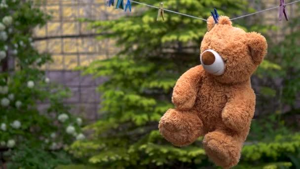 Egy plüssmackót megszárítottak egy kötélen. Medve kint lóg a szabadban. Ruházati tű a fülön.