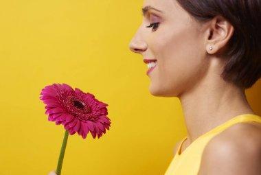 woman holding pink gerbera flower