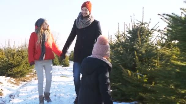 Family choosing a christmas tree