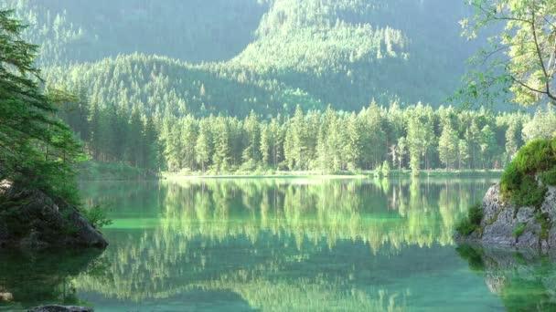 Zrcadlový hladkost lesní jezírko. Bezešvá smyčka