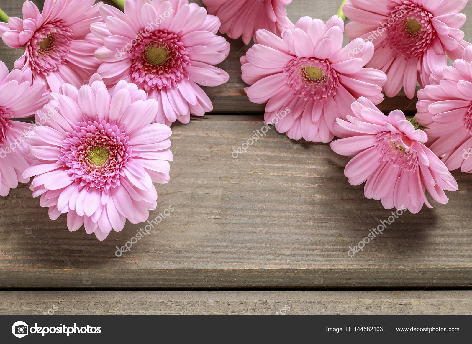 Pink Gerbera Flowers On Wooden Background Stock Photo