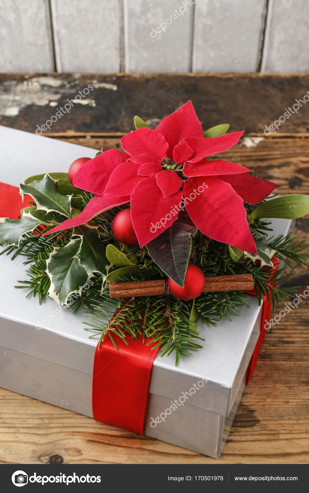 Christmas gift decoration with poinsettia flower (Euphorbia pulc– stock image