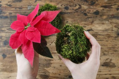 How to make christmas table decoration with red poinsettia flowe