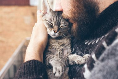 Close-up of beard man in icelandic sweater who is holding and kissing his cute purring Devon Rex cat.