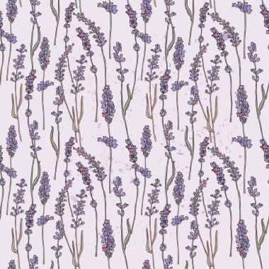 Invitation card with lavender flowers.