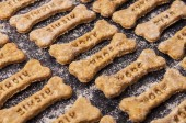 Fotografie Homemade oatmeal dog treats with carrots