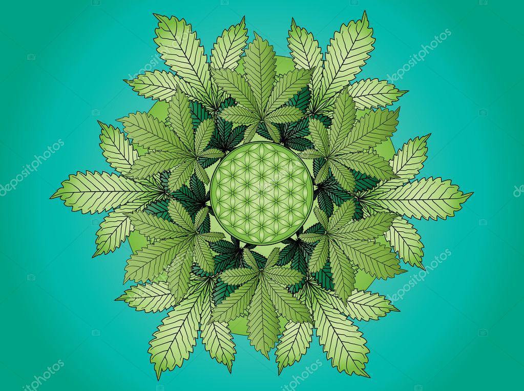 Mandala De Feuille De Cannabis Colore Photographie Smk0473