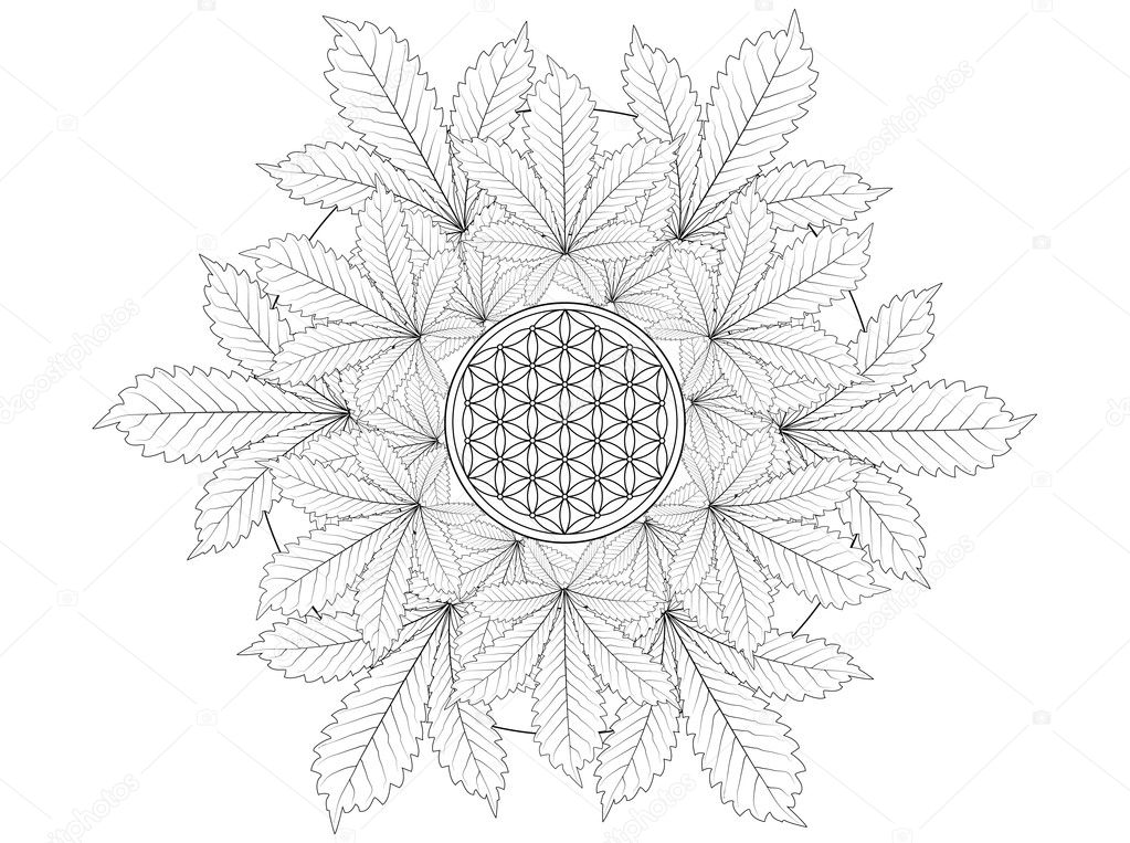 Cannabis Leaf Mandala Coloring Page — Stock Photo © smk0473 #128478030