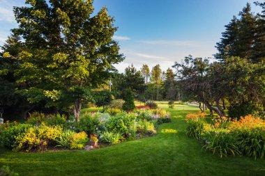 Beautiful Front Yard Garden
